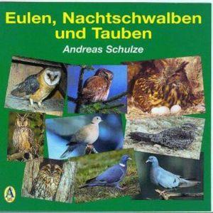 Eulen, Nachtschwalben und Tauben: Mit 32 Vogelarten und 156